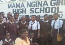 County Secondary Schools in Nakuru County; School KNEC Code, Type, Cluster, and Category