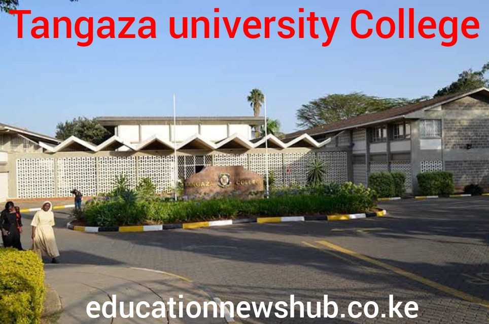 Tangaza University KUCCPS Approved Courses, Admissions, Intakes, Requirements, Students Portal, Location and Contacts