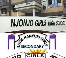 Sub County Secondary Schools in Laikipia County; School KNEC Code, Type, Cluster, and Category