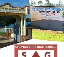Sub County Secondary Schools in Nyamira County; School KNEC Code, Type, Cluster, and Category.