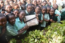 Sub County Secondary Schools in Tharaka Nithi County; School KNEC Code, Type, Cluster, and Category