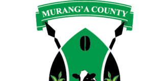 Technical and Vocational Education Training, TVETs, institutions in Murang'a County; Contacts, Fees, How to join and Requirements
