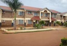 Agoro Sare High School; KCSE Performance, Location, Form One Admissions, History, Fees, Contacts, Portal Login, Postal Address, KNEC Code, Photos and Admissions