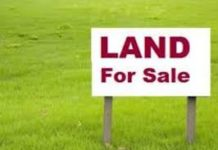 A piece of land for sale in Kenya.