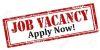 New job vacancy. Apply today!