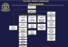 The Teachers Service Commission, TSC, Organogram. New. Revised, TSC Structure.