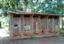 photo of dilapidated latrines at Kariguini primary school in Kandara Constituency.