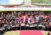 Jomo Kenyatta University of Agriculture and Technology Students' admission letters.