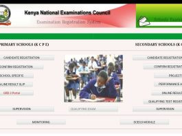 2020 KCSE project marks- Milestone 1 and 2.