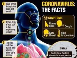 Corona Virus; Covid-19