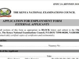 The KNEC employment application form free pdf download.