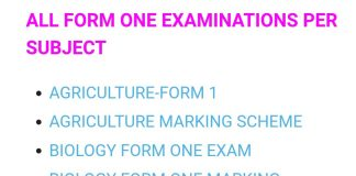 DOWNLOAD FREE FORM ONE EXAMINATIONS AND MARKING SCHEMES- ALL SUBJECTS.