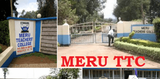 Meru TTC courses, contacts, admissions, fees...
