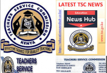 TSC Human Resource Officers; Contacts and roles