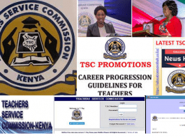 TSC Frequently Asked Questions; Find the answers here.