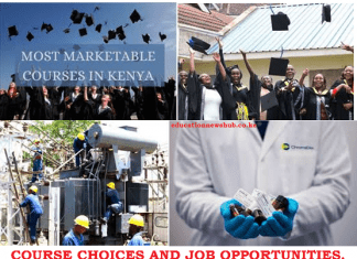 How to select a course and know its career opportunities.