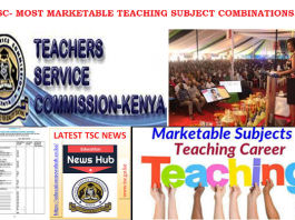 Most marketable TSC teaching subject combinations.