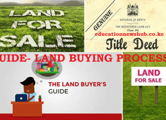 Buying land in Kenya? The dos and don'ts.