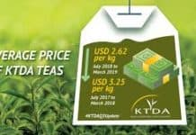 2020 Tea bonuses per Kilo for each factory.
