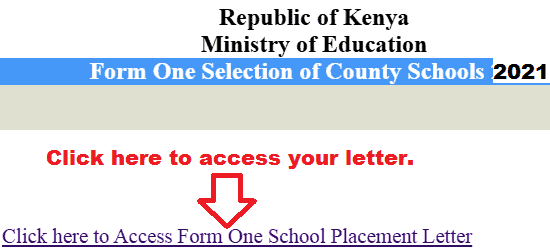 County School 2021 Form Admission Letter Download Portal 1