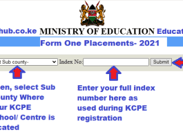 Form one admission letters download portal 2