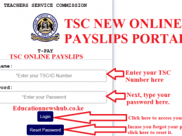 T-pay Payslips online 1
