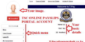 T-pay Payslips online 2