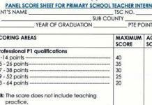 TSC interns scoresheet, recruitment marking scheme.